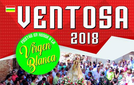 fiestas_virgen_blanca_2018